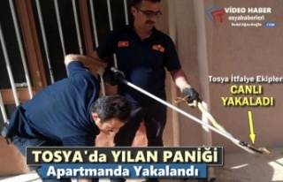 Tosya'da Bir Apartmanda İtfaiye Tarafından...