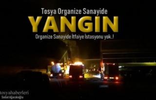 Tosya Organize Sanayi Yangın