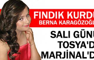 Fındık Kurdu Berna Tosya'da Sahneye Çıkacak