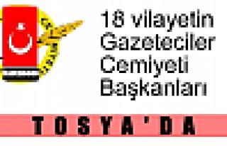 Gazeteciler Tosya'da Buluştu
