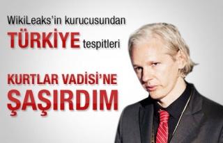 Julian Assange: Kurtlar Vadisine çok şaşırdım