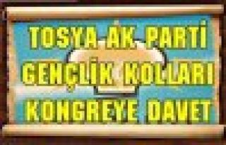 TOSYA AK PARTİ GENÇLİK KOLLARI KONGRE