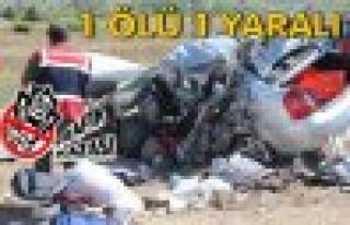 Tosya D-100'de Trafik Kazası 1 Ölü 1 Yaralı