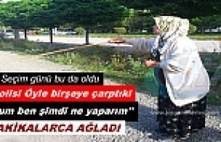 TOSYA'DA TRAFİK POLİSİNİN ÇARPTIĞI İNEK...