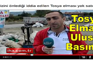 TOSYA ELMASININ 40 FAYDASI
