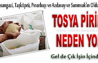 TOSYA PİRİNCİ NEDEN YOK