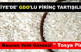 Tosya Pirincinde GDO yoktur