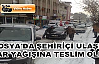 Tosya Şehiriçi Ulaşım Kar Yağışına Teslim...