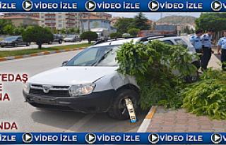 Tosya Tedaş Önünde Trafik Kazası