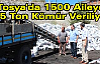 Tosya'da 1500 Aileye Kömür Yardımı Yapılıyor