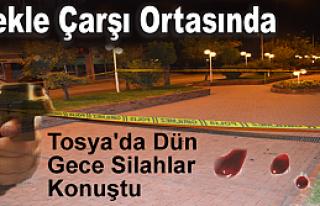 Tosya'da Gece Silahlar Konuştu (VİDEO HABER )