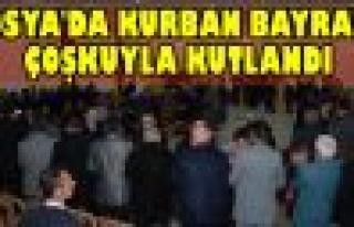 Tosya'da Kurban Bayramı Çoşkuyla Kutlandı
