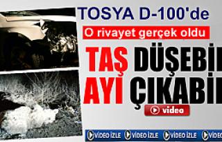 TOSYA'DA 'TAŞ DÜŞEBİLİR,AYI ÇIKABİLİR'...