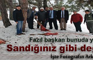 Tosya'da Yaban Hayatı Koruma Çalışmaları Devam...