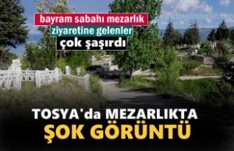 Tosya'da Bayram sabahı Mezarlıkta Şok Görüntü