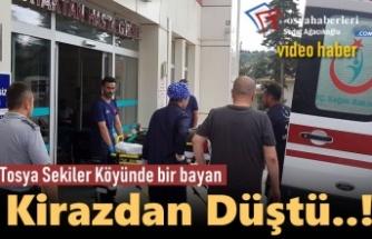 Tosya'da Bir Kişi Kirazdan Düştü