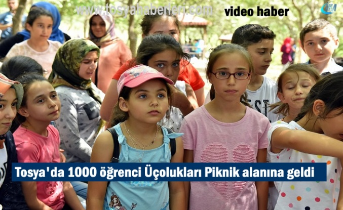 Tosya'da 1000 Yaz Kur-an Kurs Öğrencisi Piknik Yaptı