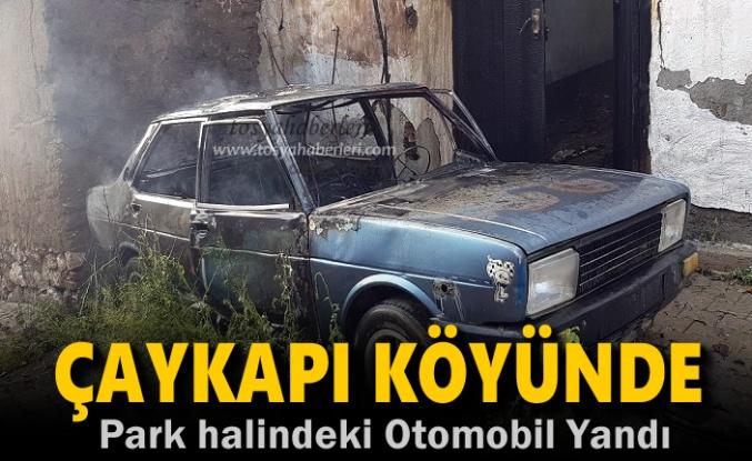 Çaykapı Köyünde Park Halindeki Otomobil Yandı