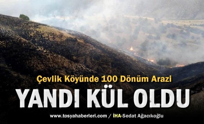 Tosya-Çevlik Köyünde 100 Dönüm Arazi Yandı
