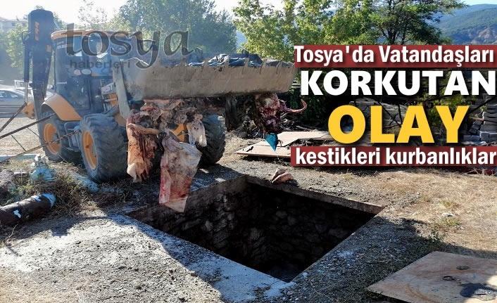 Tosya'da Vatandaşları Korkutan Olay