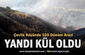 Tosya'da Tarım Arazisindeki Yangında 100 Dönüm alan Yandı