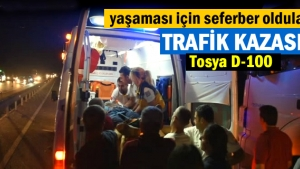 Tosya Araç içinde sıkışan sürücünün hayatta kalma mücadelesi