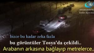 Tosya'da arabanın arkasına bağlayıp metrelerce hareket ettiler.