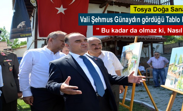 TÜRKİYE'DE BİR İLK DOĞA SANAT KAMPI TOSYA'DA AÇILDI