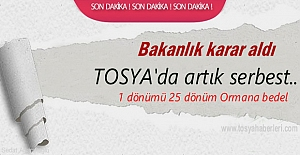 Tosya'da İzin Almak şartı ile artık Serbest