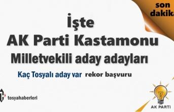 AK Parti Kastamonu Milletvekili Aday Adayları isimler kesinlik kazandı