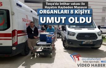 Tosya'da İntihar Vakası Sonucu Hayatını Kaybeden Manavın Organları 8 Kişiye Umut Oldu