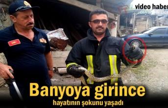 Tosya'da bir Evin Banyosunda Yılan Yakalandı