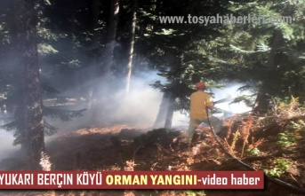 Tosya Yukarı Berçin Köyü Ormanlık Alanda Yangın