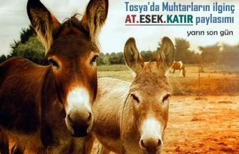 Tosya'da Muhtarlar Sosyal Paylaşımdan Önemle Duyurdular