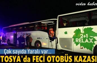 Tosya D100'de Otobüs Kazası