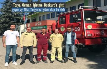 Tosya Orman İşletme Ekipleri Bozkurt'a Gitti