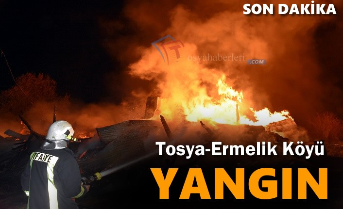 Tosya-Ermelik Köyünde Yangın