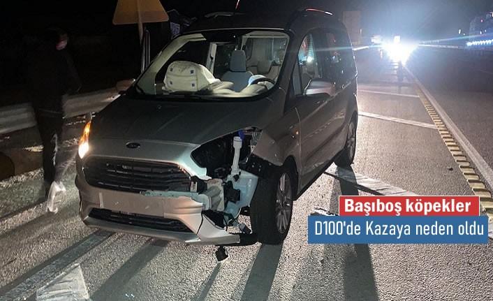 Tosya D100 Karayolunda Başıboş Köpek Kazaya neden oldu