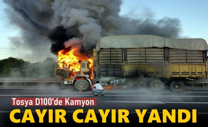 TOSYA'DA KAMYON CAYIR CAYIR YANDI