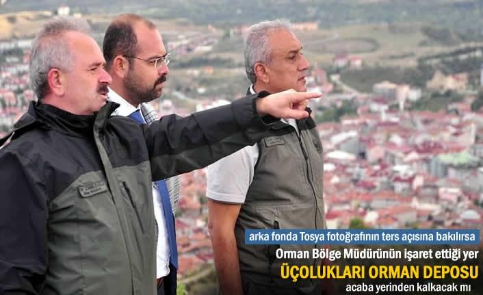 ORMAN BÖLGE MÜDÜRÜ TOSYA'DA ANA GÜNDEM ÜÇOLUKLARI ORMAN DEPOSU