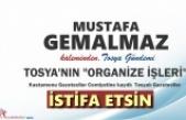 """TOSYA'NIN """"ORGANİZE İŞLERİ"""""""