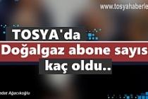 Tosya'da Doğalgaz Abone Sayısı Kaç Oldu