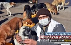 Tosya'da Köpeklere Fısıldayan Adam