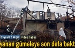 Tosya'da Gümele Yangını
