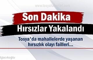 Tosya'da yaşanan Hırsızlık Olayı failleri...