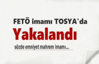 Tosya'da yakalanan FETÖ'den gözaltına alınan...