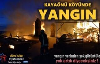 Tosya Kayaönü Köyünde Yangından Şok Görüntüler