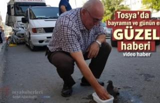 Tosya'da Günün En Güzel Haber