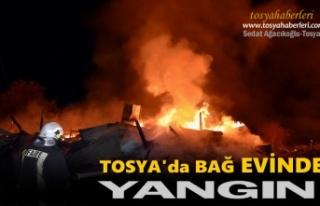 Tosya Gümele Evinde Yangın Çıktı
