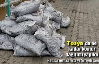 Tosya 'da İhtiyaç Sahiplerine Ne Kadar Kömür...